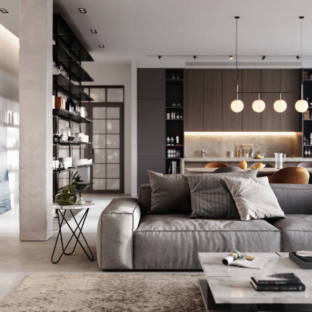 Gray and modern living room